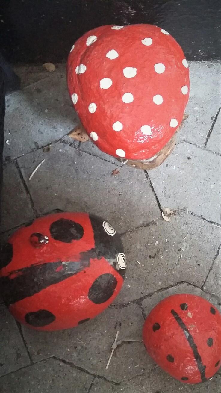 deens lieveheerbeestjes